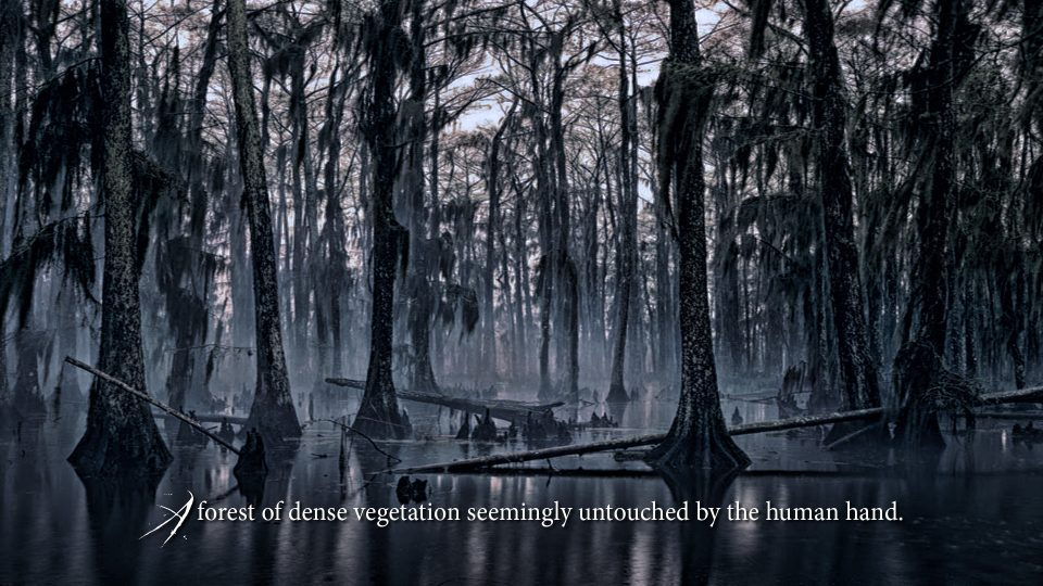 Buddha's Uncle - Spanish Moss feature film pitch deck
