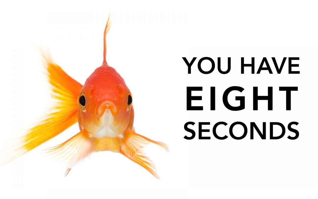 A goldfish has a better attention span than your audience (really)